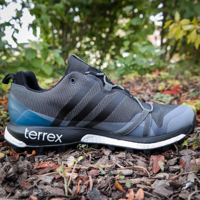 Adidas Terrex Agravic GTX M Schwarz-Blau | Trends-Sport